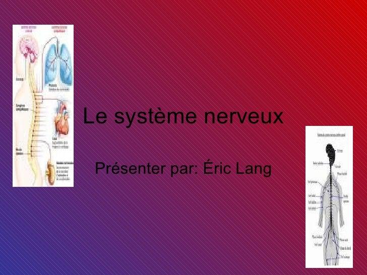 Le système nerveux Présenter par: Éric Lang
