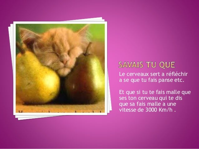 http://www.google.ca/images?hl=fr&sour ce=imghp&biw=890&bih=567&q=systeme+ nerveux&gbv=2&aq=2&aqi=g10&aql=&oq= systeme+&gs...