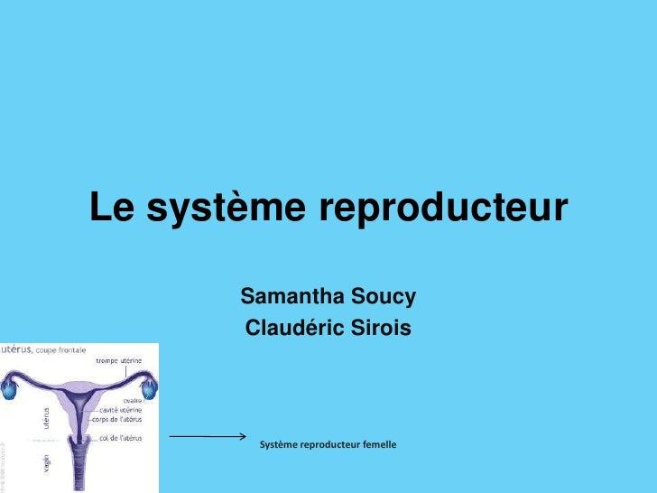 Le système reproducteur<br />Samantha Soucy<br />ClaudéricSirois<br />Système reproducteur femelle<br />