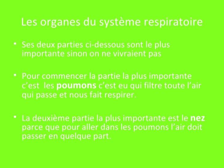 Les organes du système respiratoire <ul><li>Ses deux parties ci-dessous sont le plus importante sinon on ne vivraient pas ...