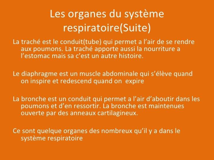 Les organes du système respiratoire(Suite) <ul><li>La traché est le conduit(tube) qui permet a l'air de se rendre  aux pou...