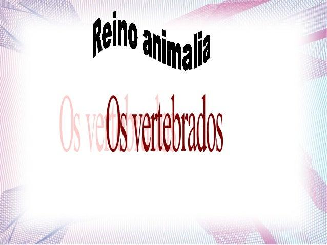 Características               gerais São animais chordados queapresentam colunavertebral,endoesqueleto (esqueletointerno),...