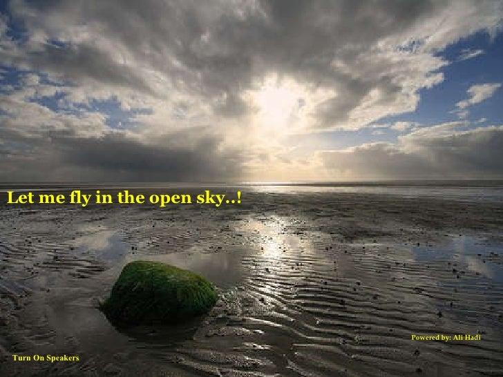 Ali Hadi Let me fly in the open sky..! Powered by: Ali Hadi Turn On Speakers