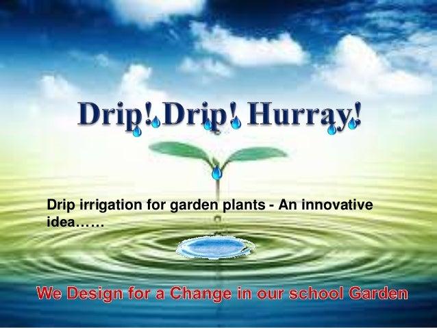 Drip irrigation for garden plants - An innovativeidea……