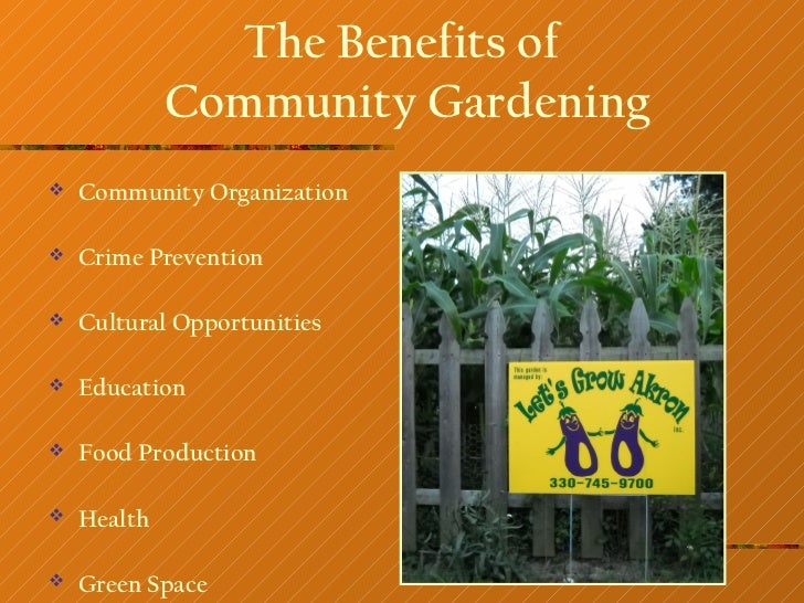 The Benefits of             Community Gardening   Community Organization   Crime Prevention   Cultural Opportunities  ...