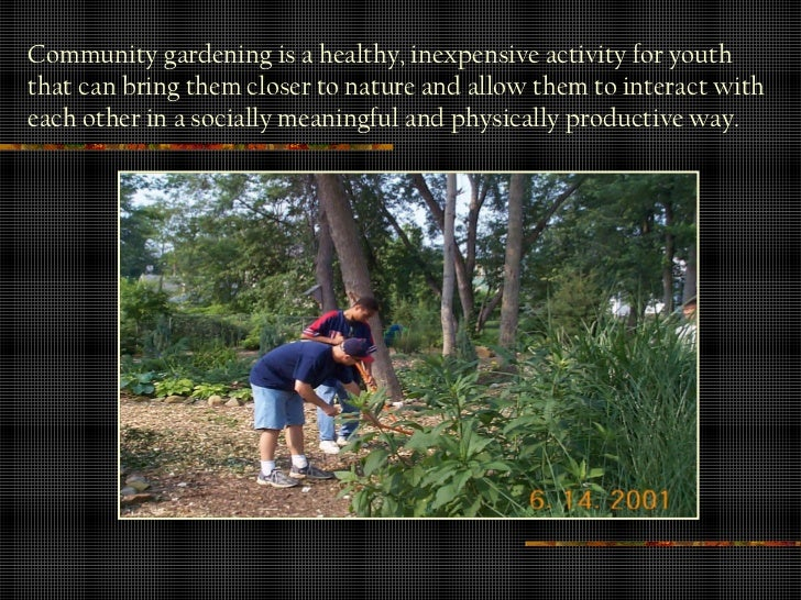 the significant benefit of community gardening The wellbeing benefits from community garden participation have been grouped  into  wellbeing is important to consider in the context of community gardens.