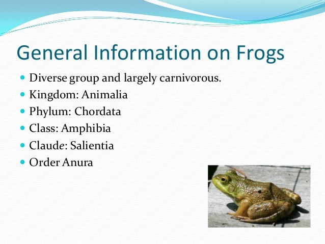 Let's learn about frogs!