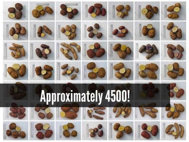 Approximately 4500! http://www.flickr.com/photos/benmillett/241673100/