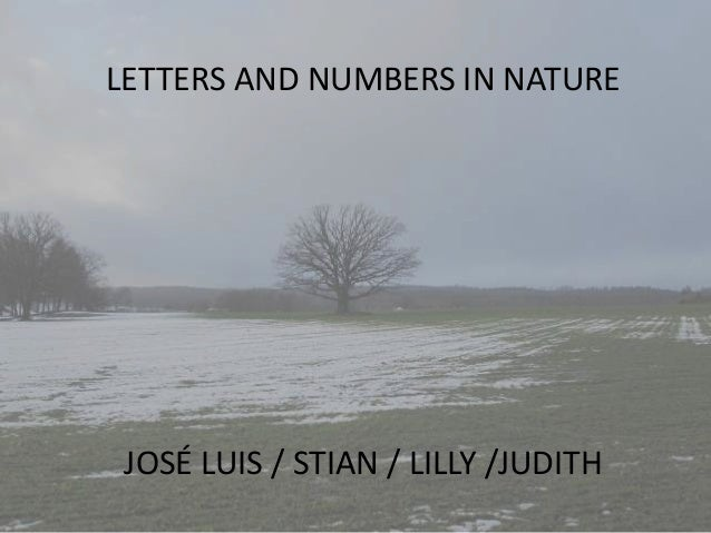 LETTERS AND NUMBERS IN NATURE JOSÉ LUIS / STIAN / LILLY /JUDITH