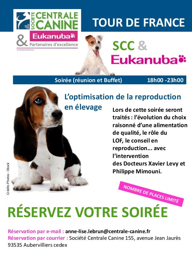 centrale canine 93535 aubervilliers