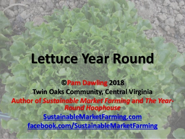 Lettuce Year Round ©Pam Dawling 2018 Twin Oaks Community, Central Virginia Author of Sustainable Market Farming and The Ye...