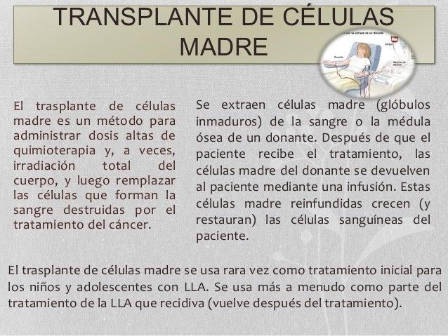 TRANSPLANTE DE CÉLULAS MADRE El trasplante de células madre es un método para administrar dosis altas de quimioterapia y, ...