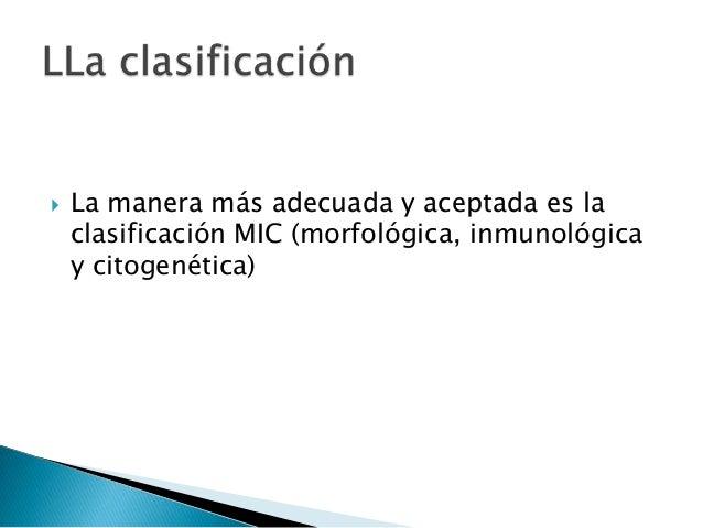 • Frecuencia del 82% • Blastos pequeños, del tamaño de 2 linfocitos • Escaso citoplasma cromatina fina • Nucleolos apenas ...