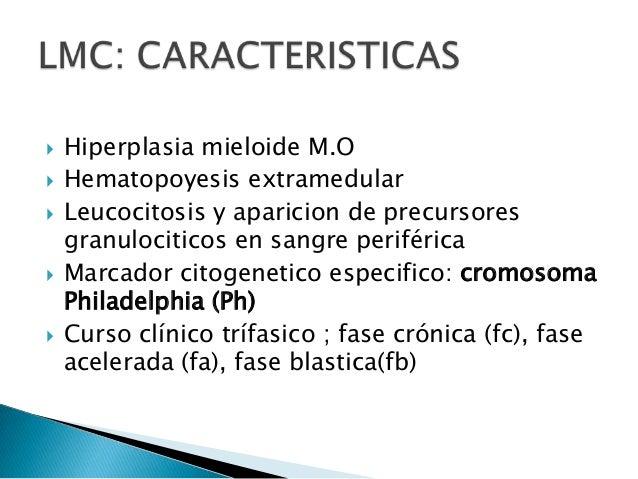  Bioquímicos: aumento de vitamina B12, aumento de trascobalamina I, hiperuricemia, aumento LDH.  Mielograma: médula ósea...