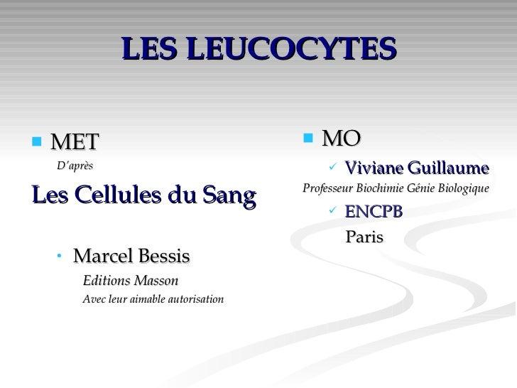 LES LEUCOCYTES <ul><li>MET </li></ul><ul><ul><li>D'après </li></ul></ul><ul><li>Les Cellules du Sang </li></ul><ul><ul><li...