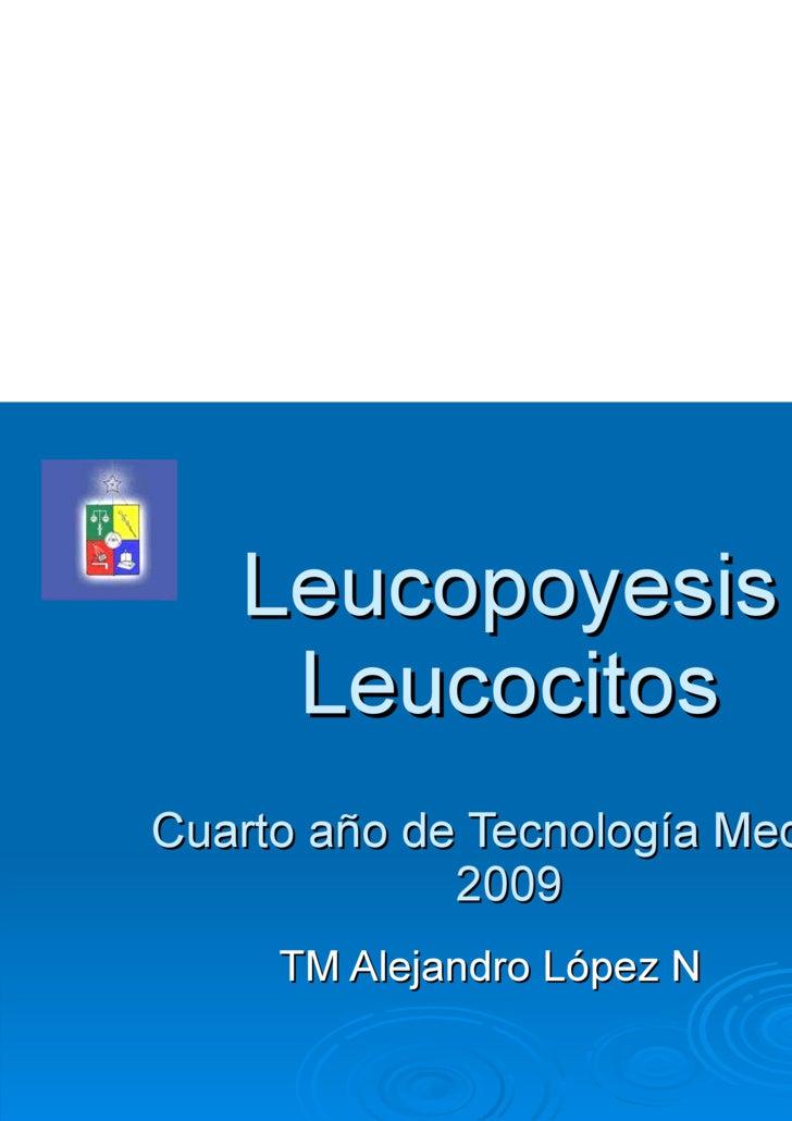 Leucopoyesis  Leucocitos Cuarto año de Tecnología Medica 2009 TM Alejandro López N