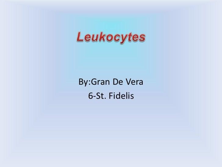 Leukocytes<br />By:Gran De Vera<br />6-St. Fidelis<br />