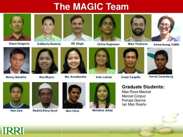 MAGIC Nursery 2013 WS MAGIC Global Indica MAGIC MAGIC MET- 3 at IRRI MAGIC Plus Thank you