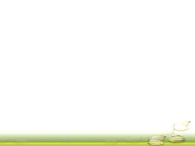 GRM 2013: MAGIC Rice Multi-parent Advanced Generation Inter-Cross -- H Leung