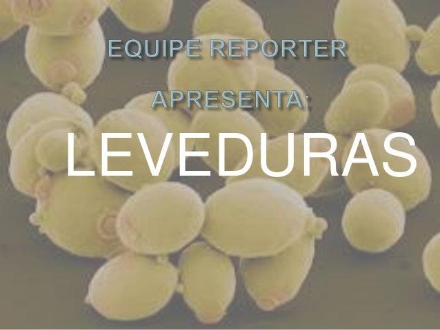 LEVEDURAS
