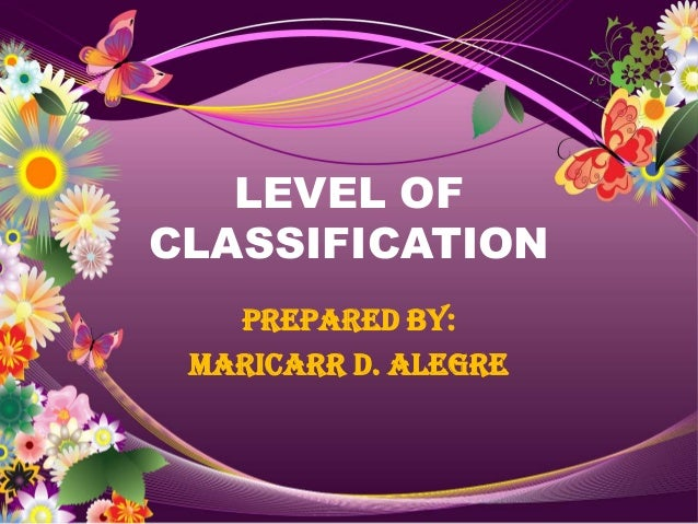LEVEL OFCLASSIFICATION   Prepared by: MARICARR D. ALEGRE