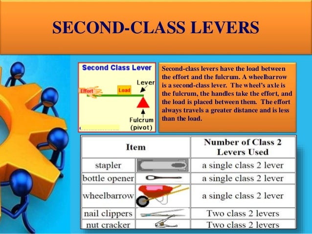 Lever And Its Types
