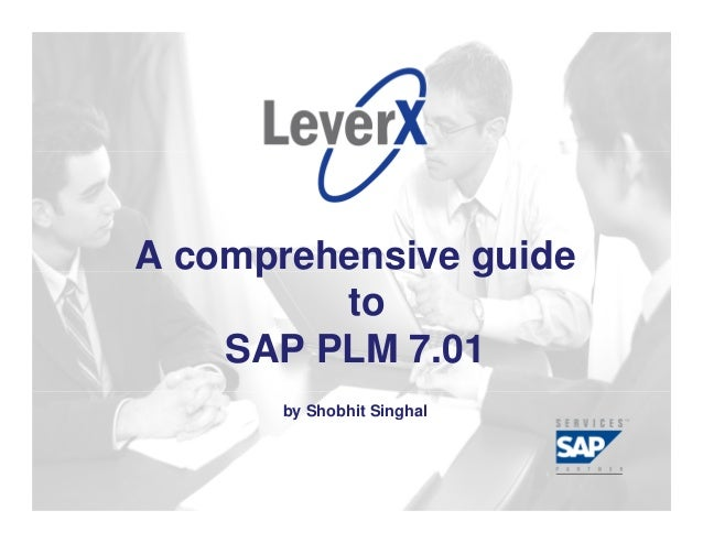 Assisting Companies LeverageInvestments in SAP Solutions                         A comprehensive guide                    ...