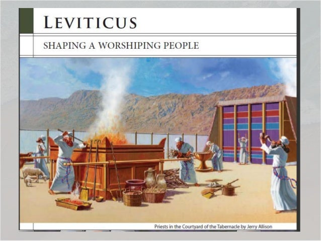 Rose Bible Overview ...  sc 1 st  SlideShare & Leviticus 1 Matters Of The Levites Godu0027s tent of meeting tabernacu2026