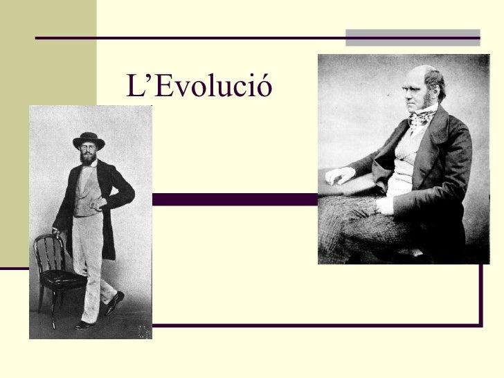 L'Evolució