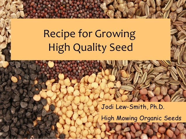 Recipe for Growing High Quality Seed  Jodi Lew-Smith, Ph.D. High Mowing Organic Seeds