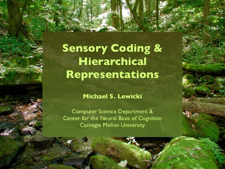 Sensory Coding &   Hierarchical Representations        Michael S. Lewicki   Computer Science Department &Center for the Ne...