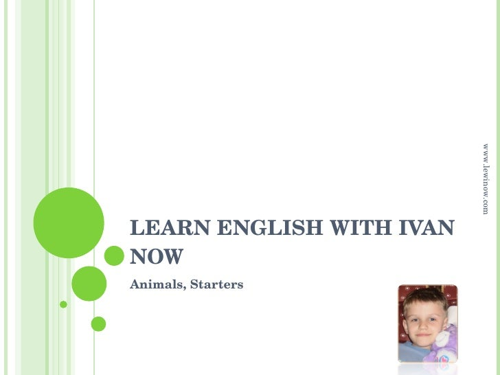 LEARN ENGLISH WITH IVAN NOW Animals, Starters www.lewinow.com
