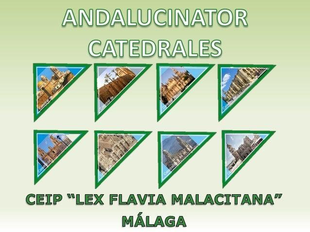 "ANDALUCINATOR CATEDRALES CEIP ""LEX FLAVIA MALACITANA"""