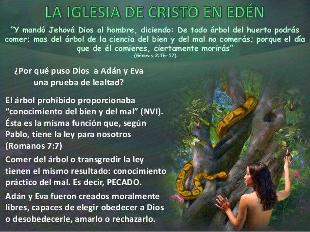 La Iglesia de Cristo y la Ley. Slide 3