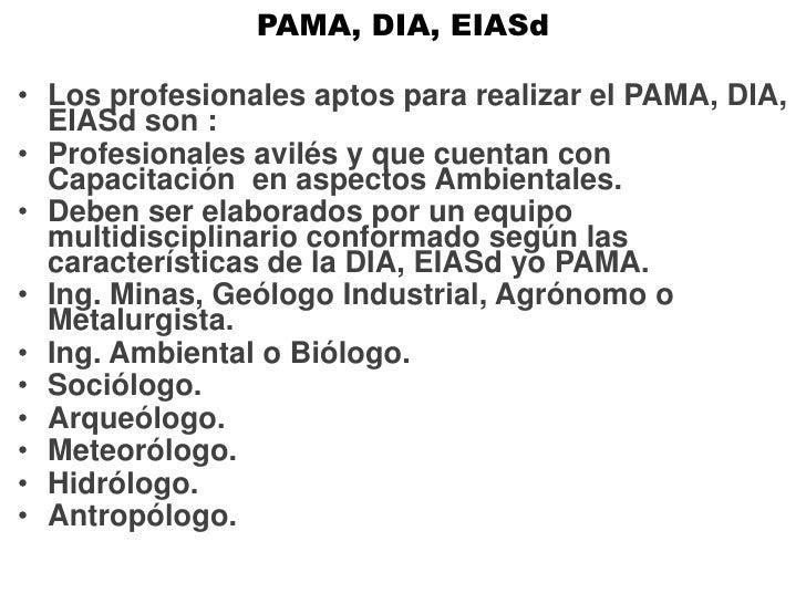 PAMA, DIA, EIASd Los profesionales aptos para realizar el PAMA, DIA, EIASd son : Profesionales avilés y que cuentan con Ca...
