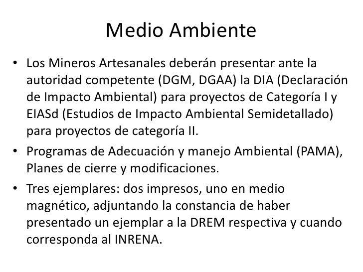 Medio Ambiente Los Mineros Artesanales deberán presentar ante la autoridad competente (DGM, DGAA) la DIA (Declaración de I...