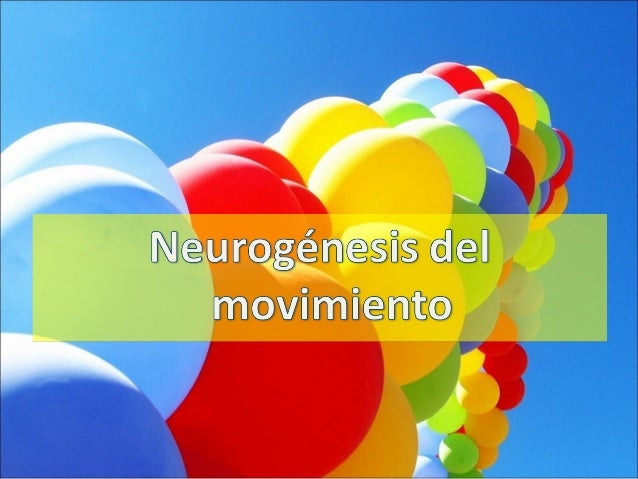 Leyes del desarrollo motor y neuroplasticidad Slide 3