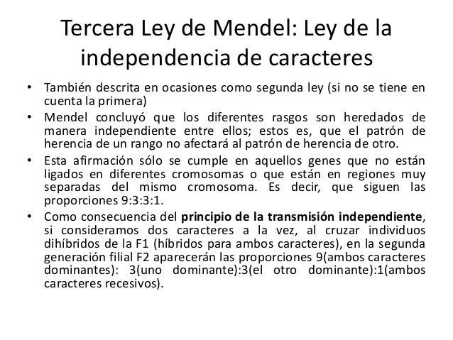 Resumen De La Ley 2492 Leyes Mendel