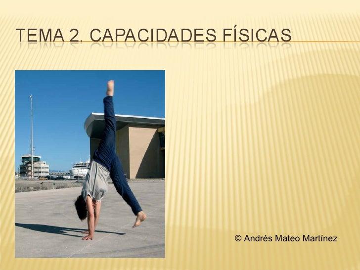 © Andrés Mateo Martínez