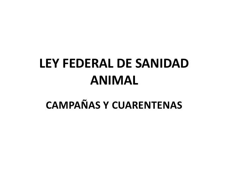 LEY FEDERAL DE SANIDAD ANIMAL <br />CAMPAÑAS Y CUARENTENAS<br />