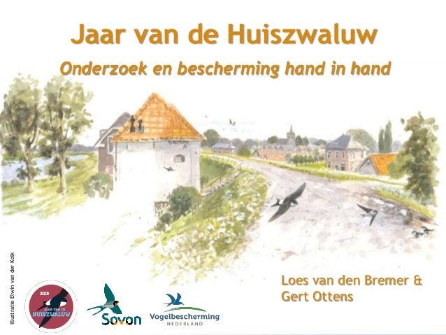 Sovon Vogelonderzoek Nederland Jaar van de Huiszwaluw 2018 Jaar van de Huiszwaluw Loes van den Bremer & Gert Ottens Onderz...