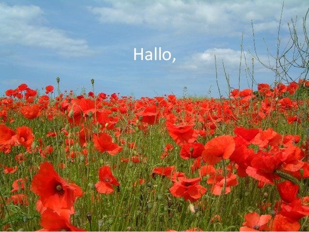 Hallo,