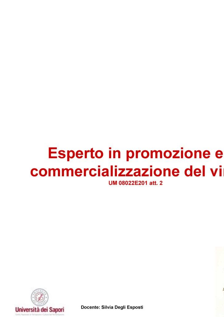Esperto in promozione e commercializzazione del vino UM 08022E201 att. 2