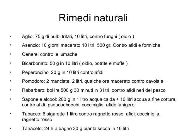 Corso di orticoltura grow the planet settima lezione for Rimedi contro le talpe