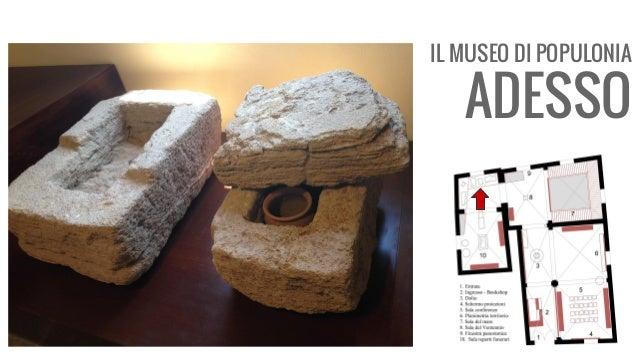 IL MUSEO DI POPULONIA ADESSO