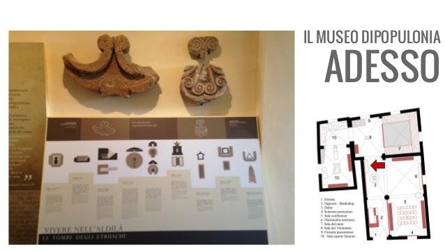 IL MUSEO DIPOPULONIA ADESSO