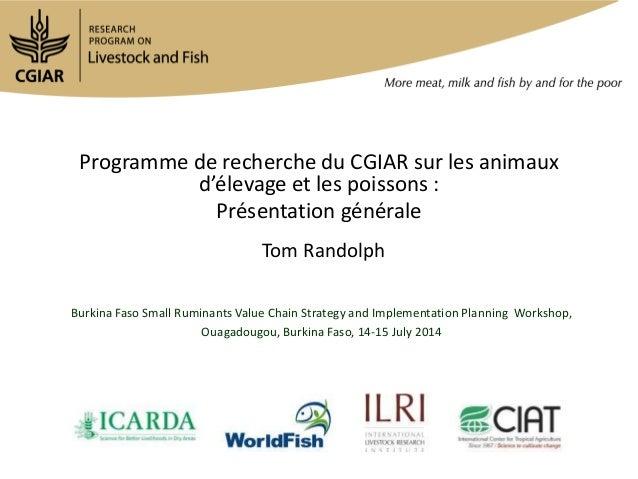Programme de recherche du CGIAR sur les animaux d'élevage et les poissons : Présentation générale Tom Randolph Burkina Fas...