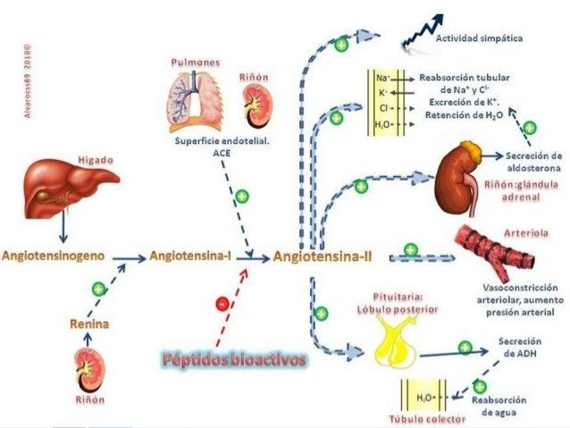 Hipertensión Arterial Sistemica Manejo