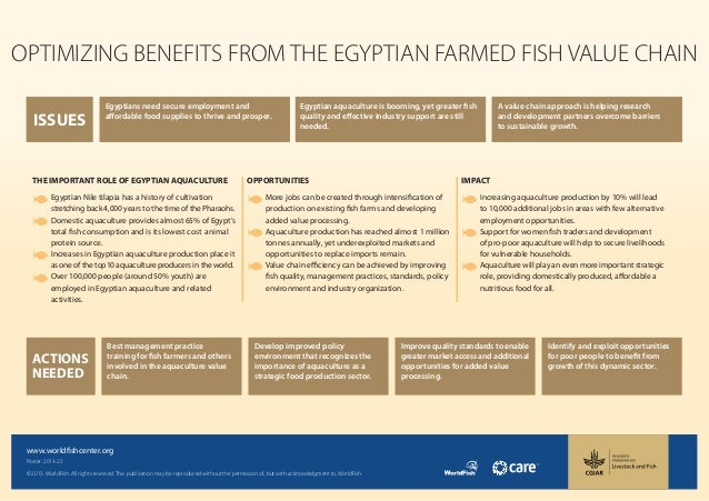 ISSUESOPTIMIZING BENEFITS FROM THE EGYPTIAN FARMED FISH VALUE CHAINA value chain approach is helping researchand developme...