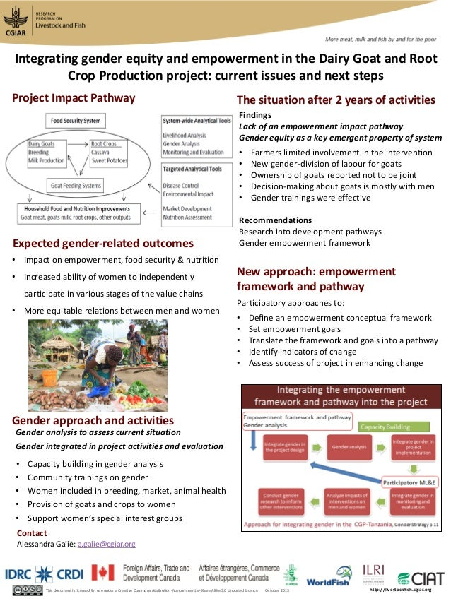 Expected gender-related outcomes Gender approach and activities Project Impact Pathway This document is licensed for use u...
